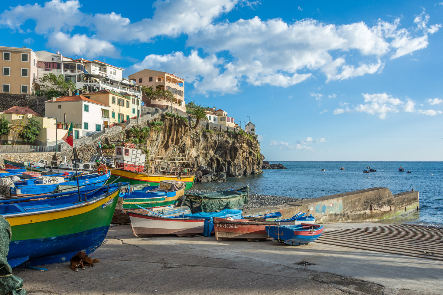 Discover the Beauty of Madeira Island
